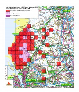 Red squirrel recorded presence 2014 Lancs &  Merseyside