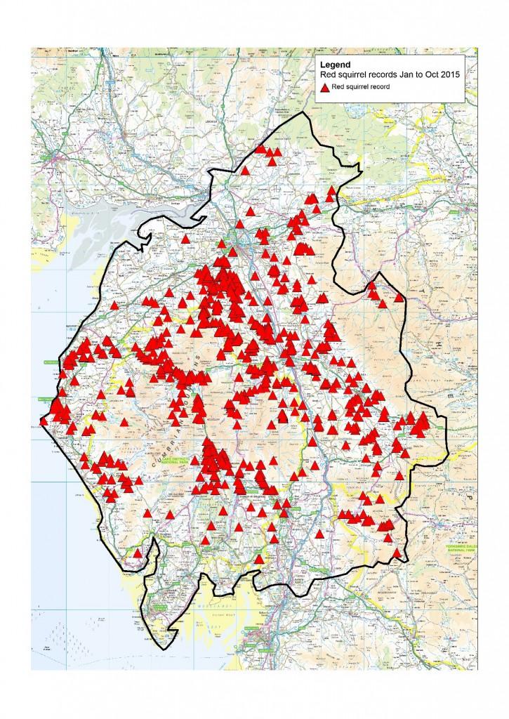 Cumbria reds Jan to Oct 2015 (2)