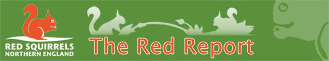 RSNE Red Report